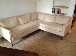 MID CENT COUCH 2