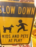 SLOW DOWN KIDS