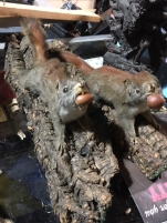 SQUIREL TAXIDERMY 2