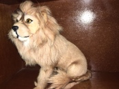 REAL FUR LION