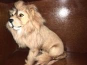 REAL FUR LION