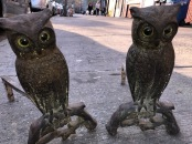 ANTIQUE OWL ANDIRONS $250