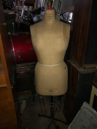 SIZE 20 DRESS FORM