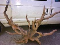 largedriftwood